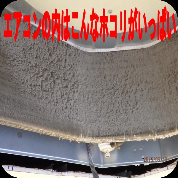 image4258
