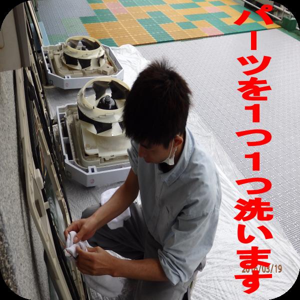 image4388