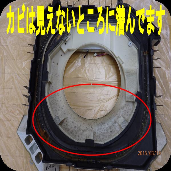 image4399